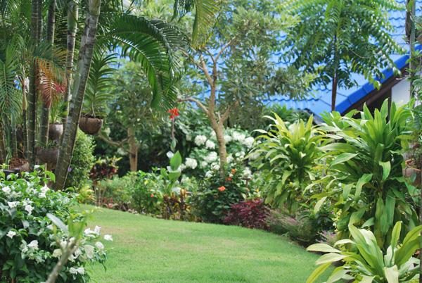 landscape Design Phuket Island, Thailand