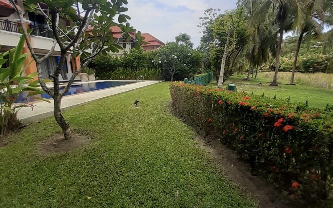Landscape design 9
